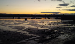 Topsham, Goat Walk, sunset